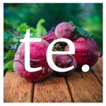 TE_logo_small4
