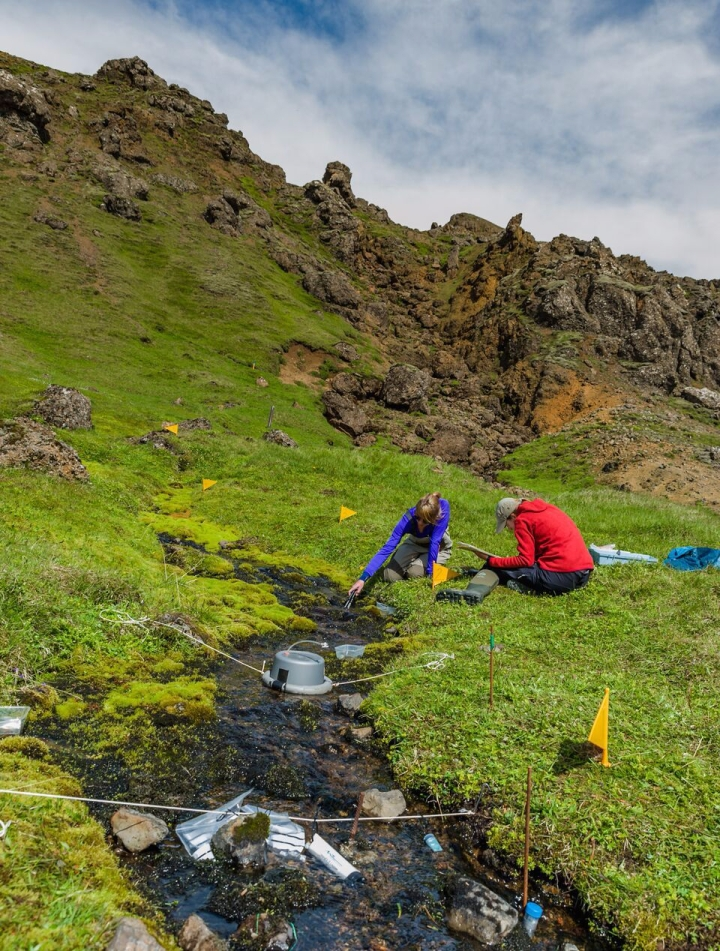 Measuring ecosystem processes associated with the carbon and nitrogen cycle in Iceland.